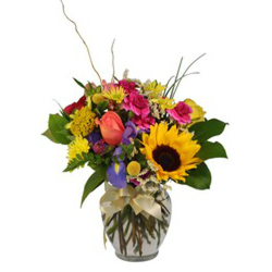 Color Your Day from Verzaal's Florist & Events in Wilmington