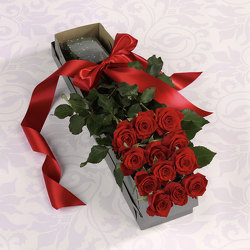 Dozen Red Roses Boxed from Verzaal's Florist & Events in Wilmington