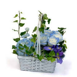 Singing the Blues from Verzaal's Florist & Events in Wilmington