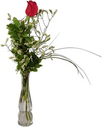 One Red Rose Budvase from Verzaal's Florist & Events in Wilmington