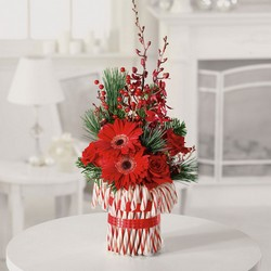 christmas treat from Verzaal's Florist & Events in Wilmington
