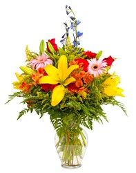 Premier Favorite from Verzaal's Florist & Events in Wilmington