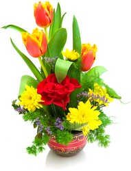 Tulip Delight from Verzaal's Florist & Events in Wilmington