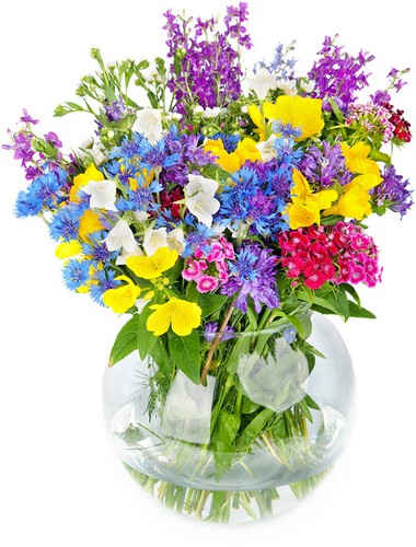 Wilmington nc flowers and florists online flowers delivery service pretty please item no bb 009 mightylinksfo